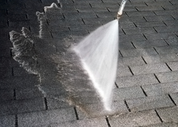 Roof Cleaning Services
